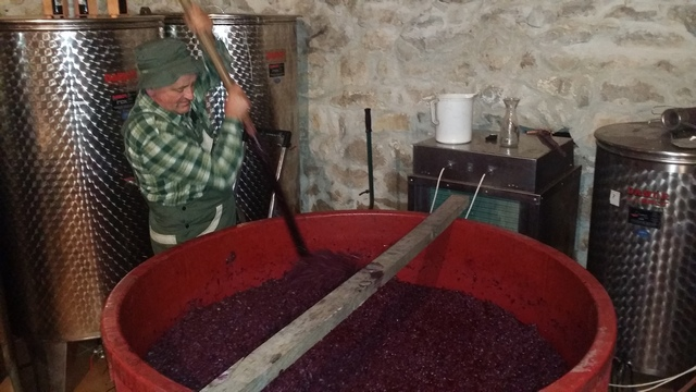 winetourcroatia2