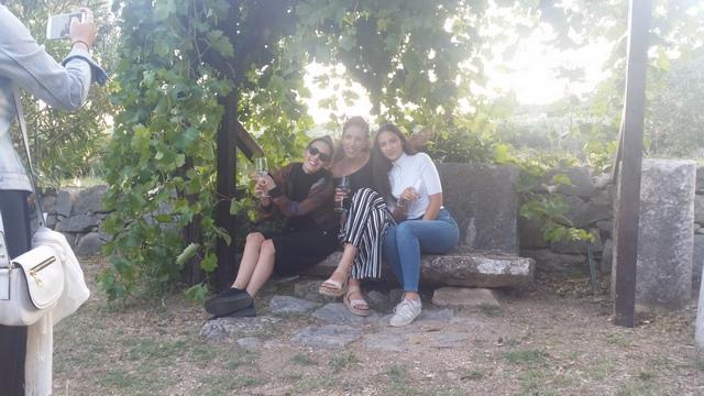 winetourcroatia4